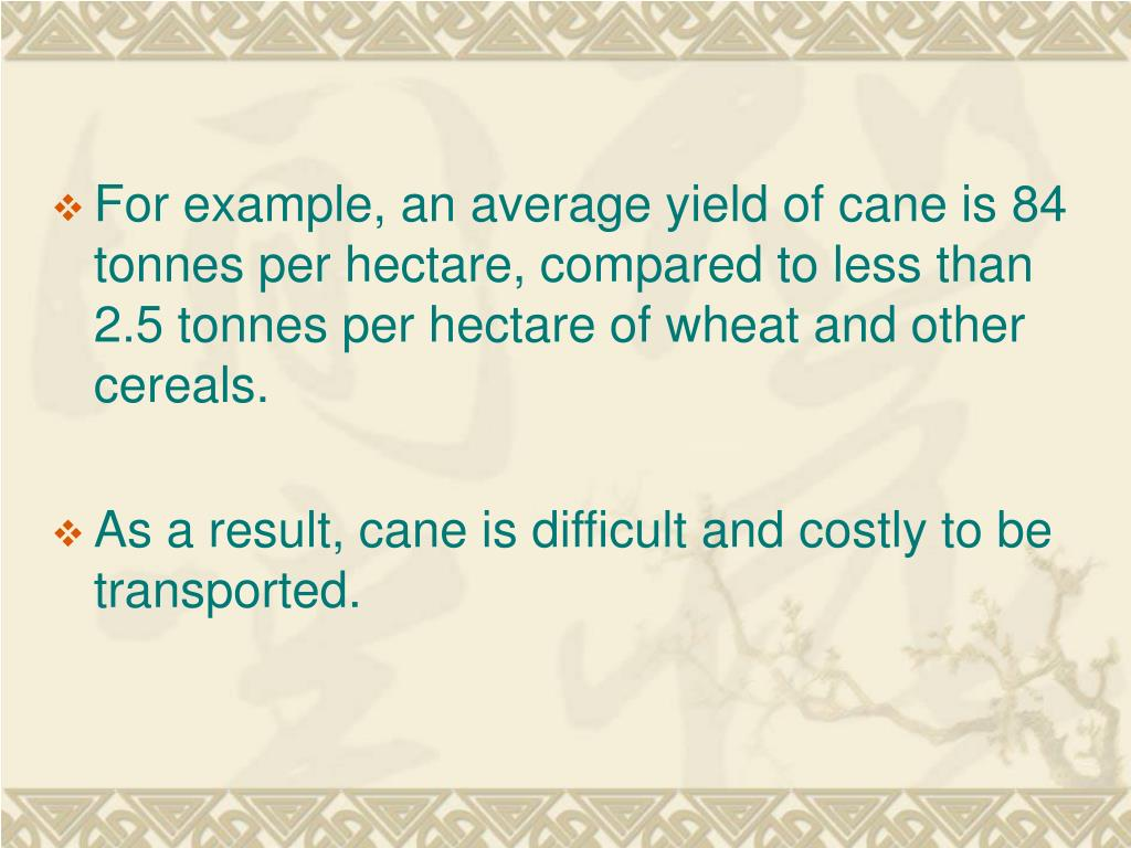 For example, an average yield of cane is 84 tonnes per hectare, compared to less than 2.5 tonnes per hectare of wheat and other cereals.