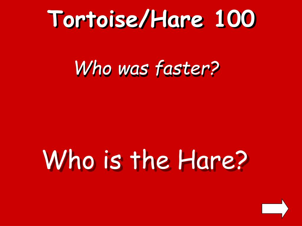 Tortoise/Hare 100