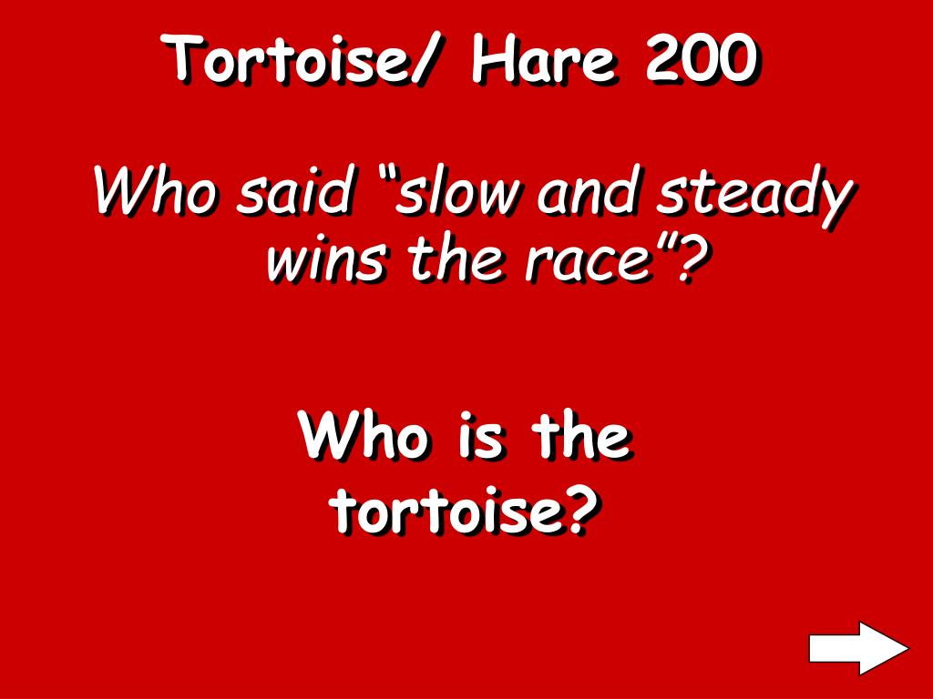 Tortoise/ Hare 200