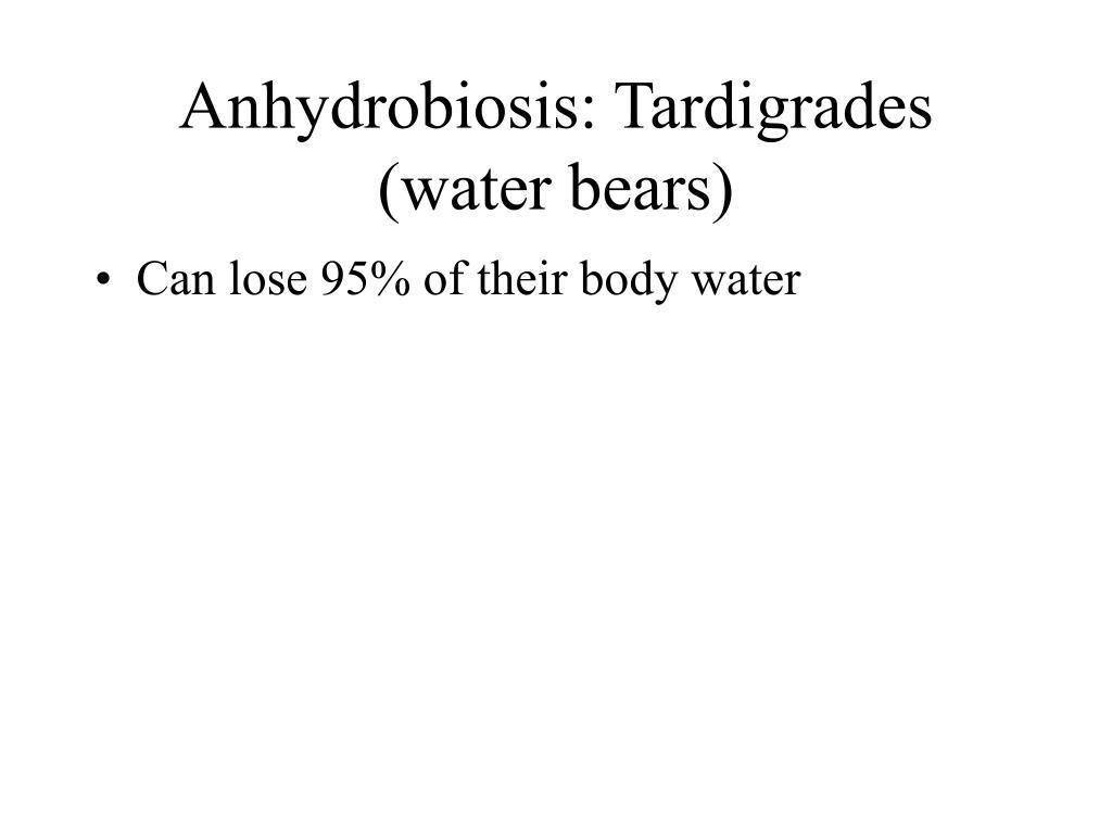 Anhydrobiosis: Tardigrades (water bears)