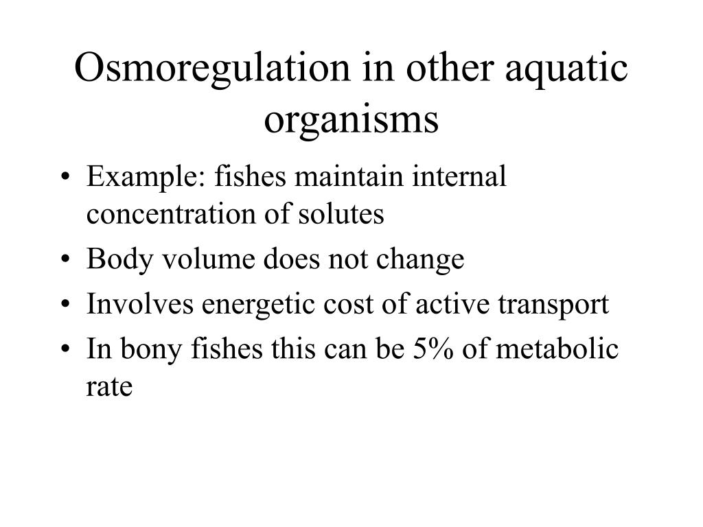 Osmoregulation in other aquatic organisms