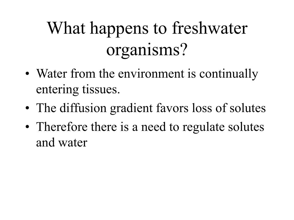 What happens to freshwater organisms?