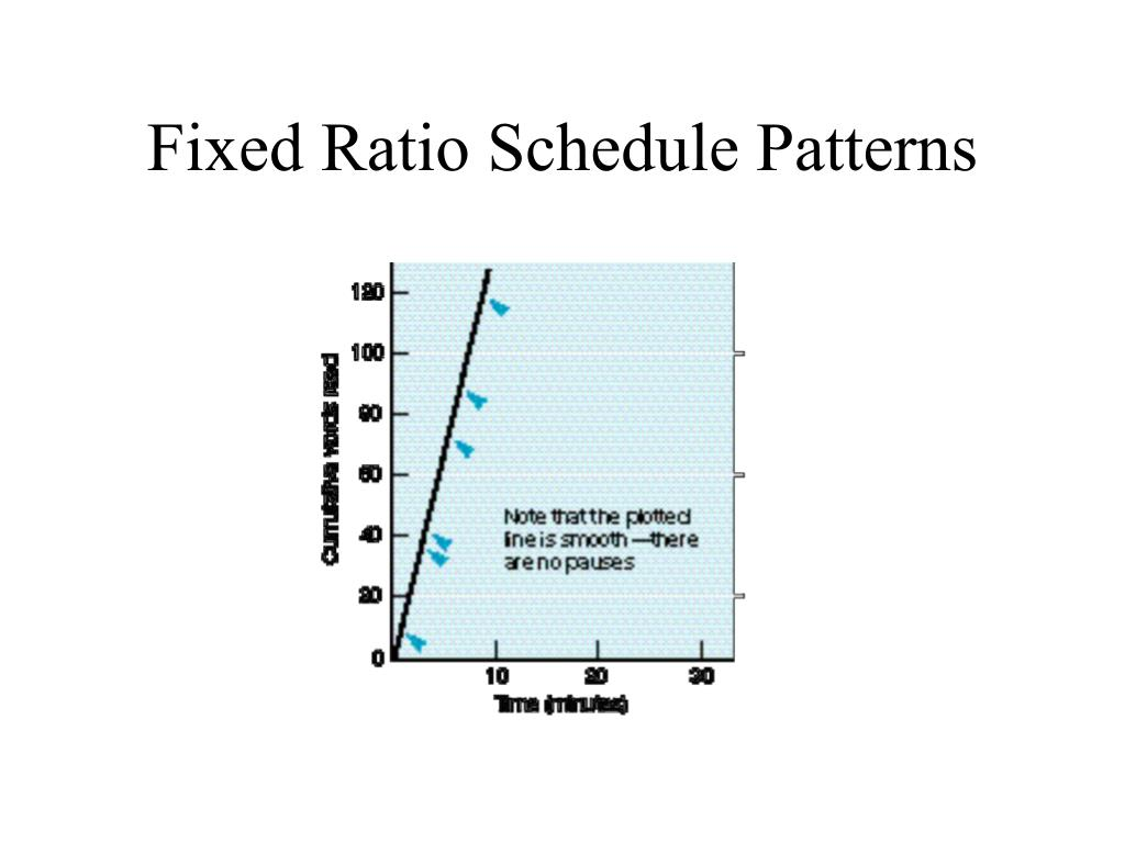 Fixed Ratio Schedule Patterns