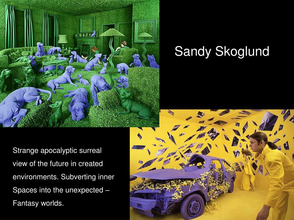 Sandy Skoglund