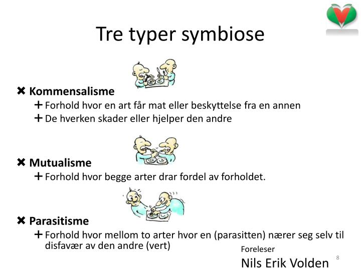 Tre typer symbiose