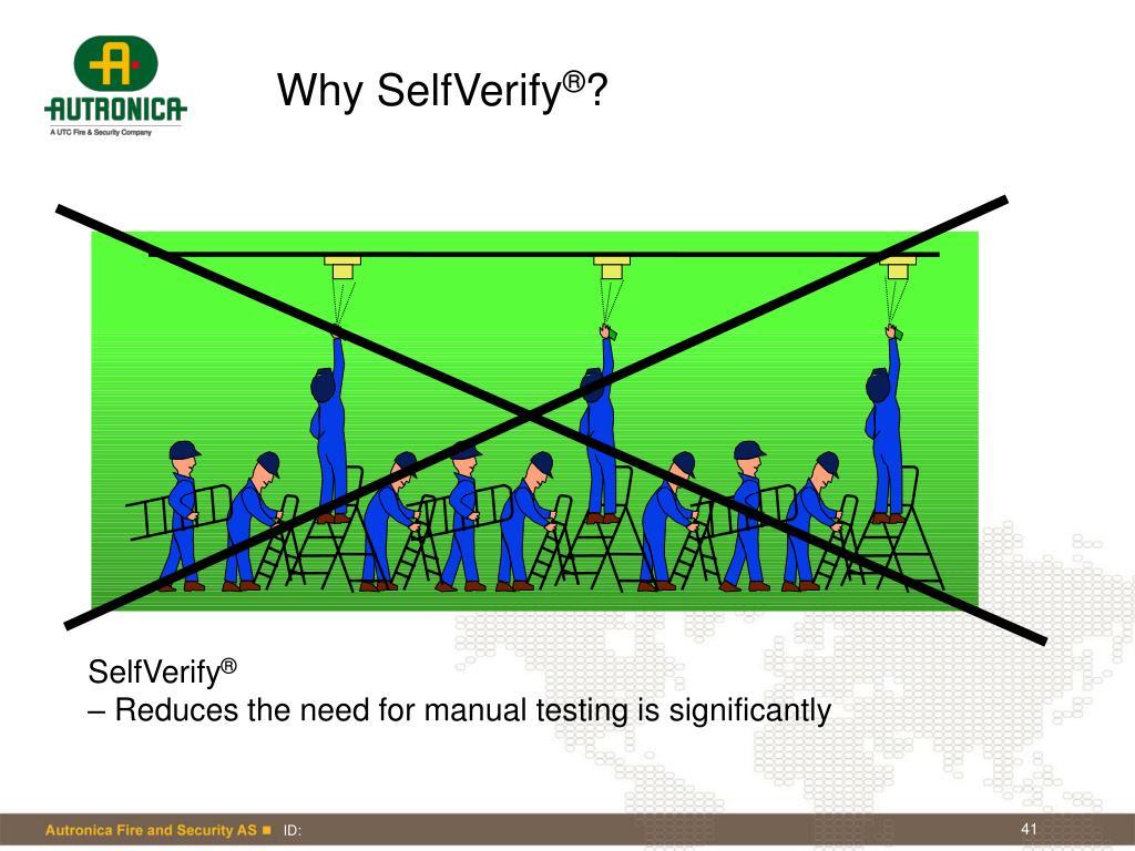 Why SelfVerify
