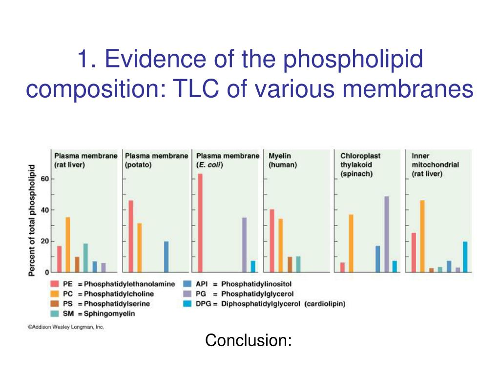 1. Evidence of the phospholipid composition: TLC of various membranes