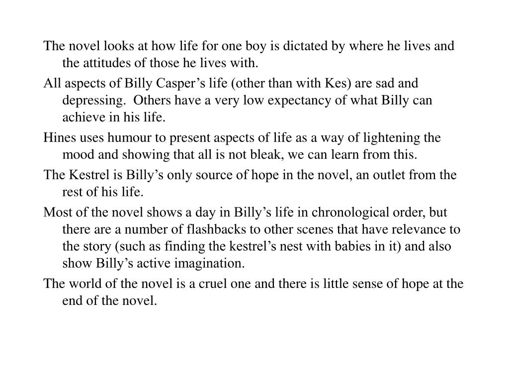 The novel looks at how life for one boy is dictated by where he lives and the attitudes of those he lives with.