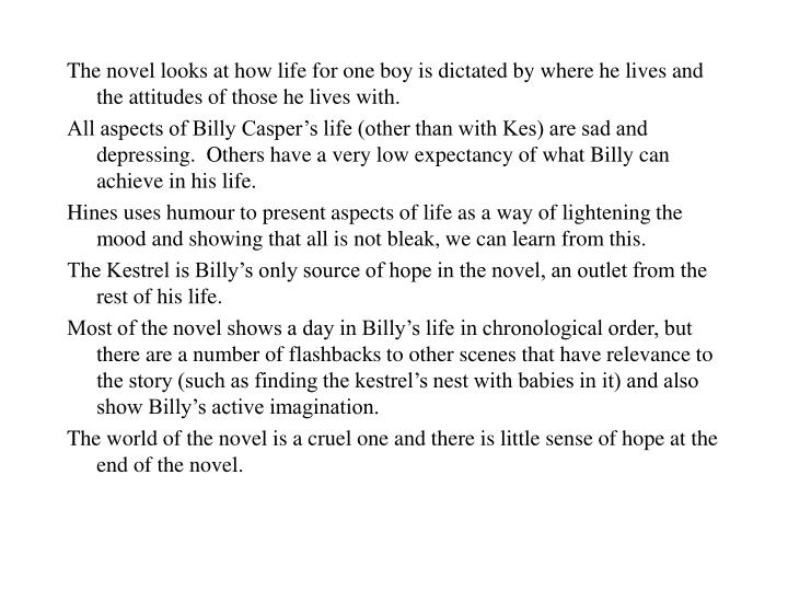 The novel looks at how life for one boy is dictated by where he lives and the attitudes of those he ...