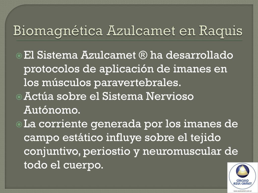 Biomagnética Azulcamet en Raquis