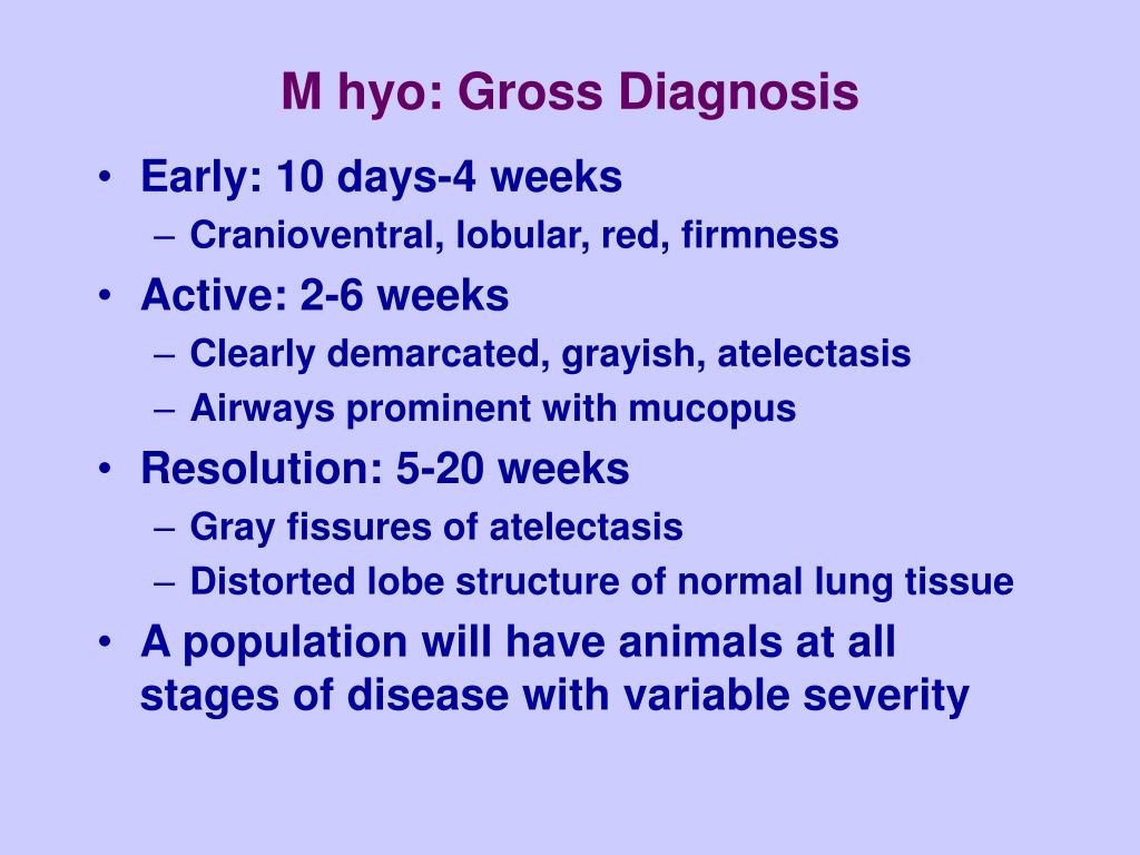 M hyo: Gross Diagnosis