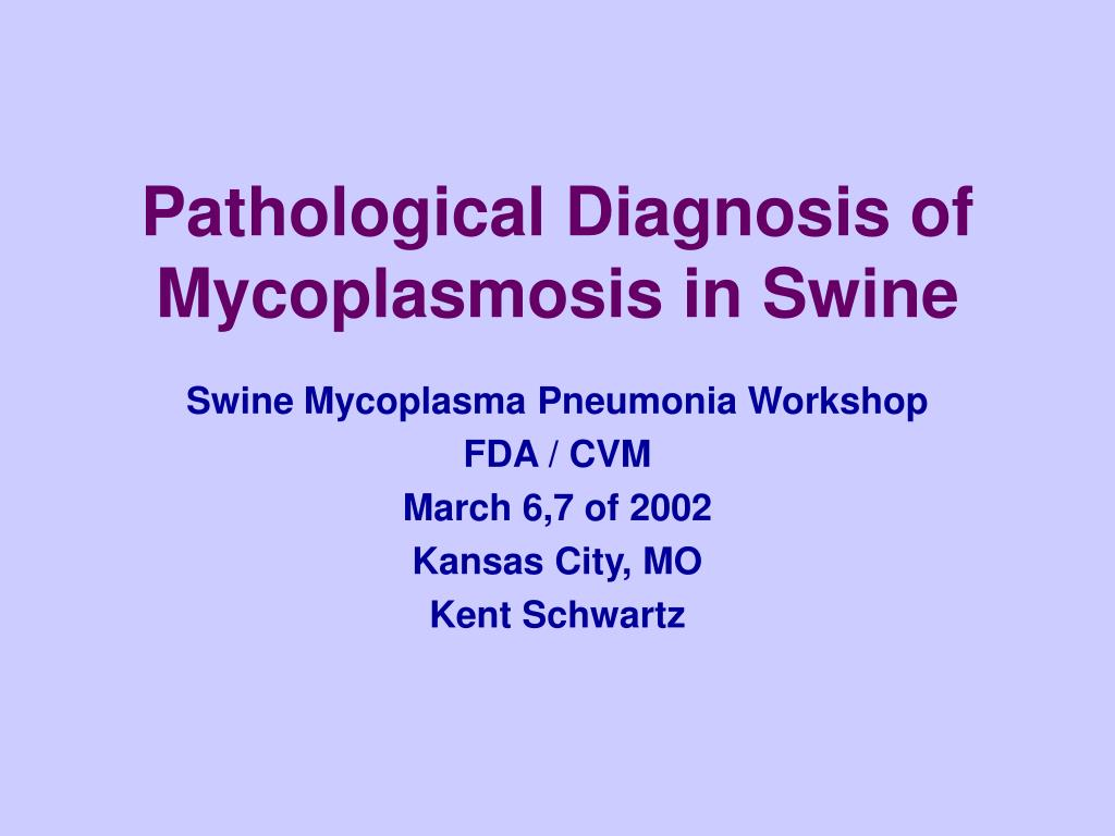 Pathological Diagnosis of Mycoplasmosis in Swine
