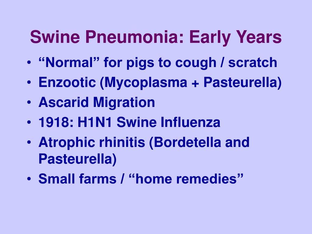 Swine Pneumonia: Early Years