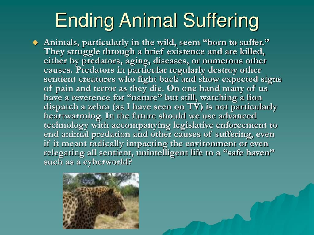 Ending Animal Suffering