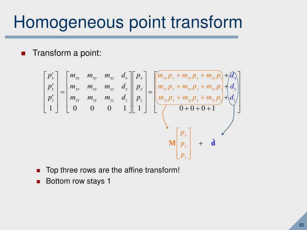 Homogeneous point transform