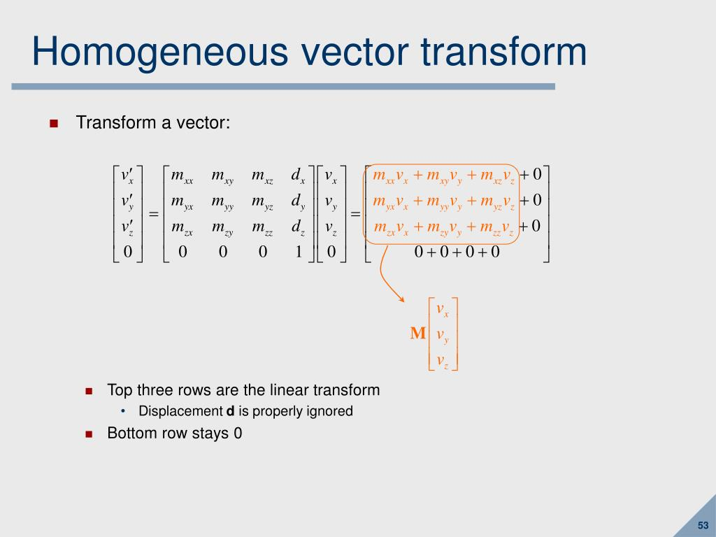Homogeneous vector transform