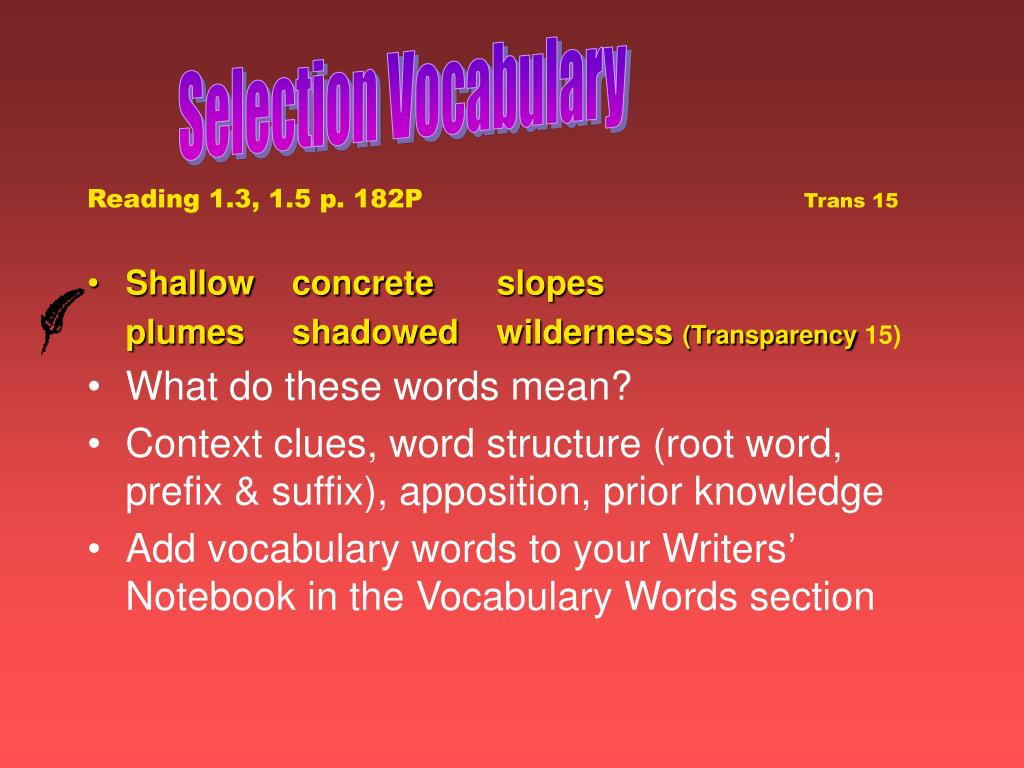 Selection Vocabulary