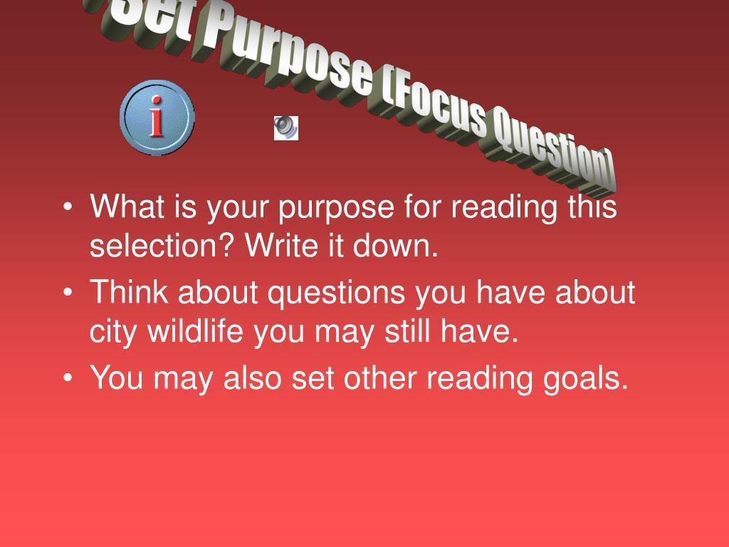 Set Purpose (Focus Question)