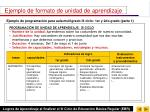 ejemplo de formato de unidad de aprendizaje41