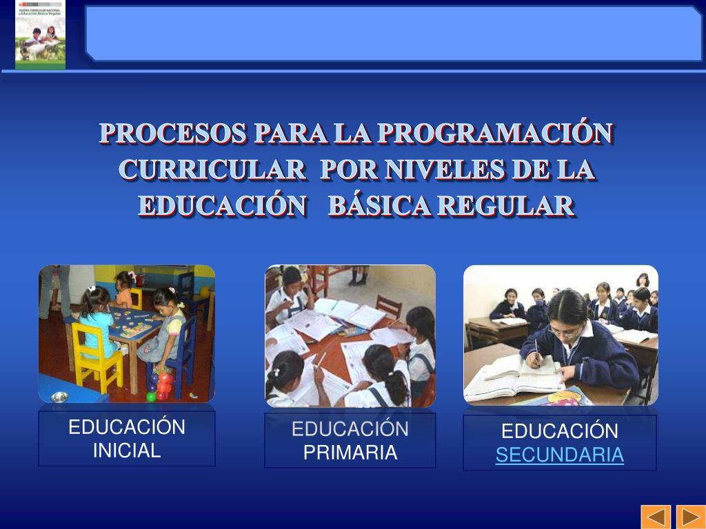 PROCESOS PARA LA PROGRAMACIÓN CURRICULAR  POR NIVELES DE LA EDUCACIÓN   BÁSICA REGULAR