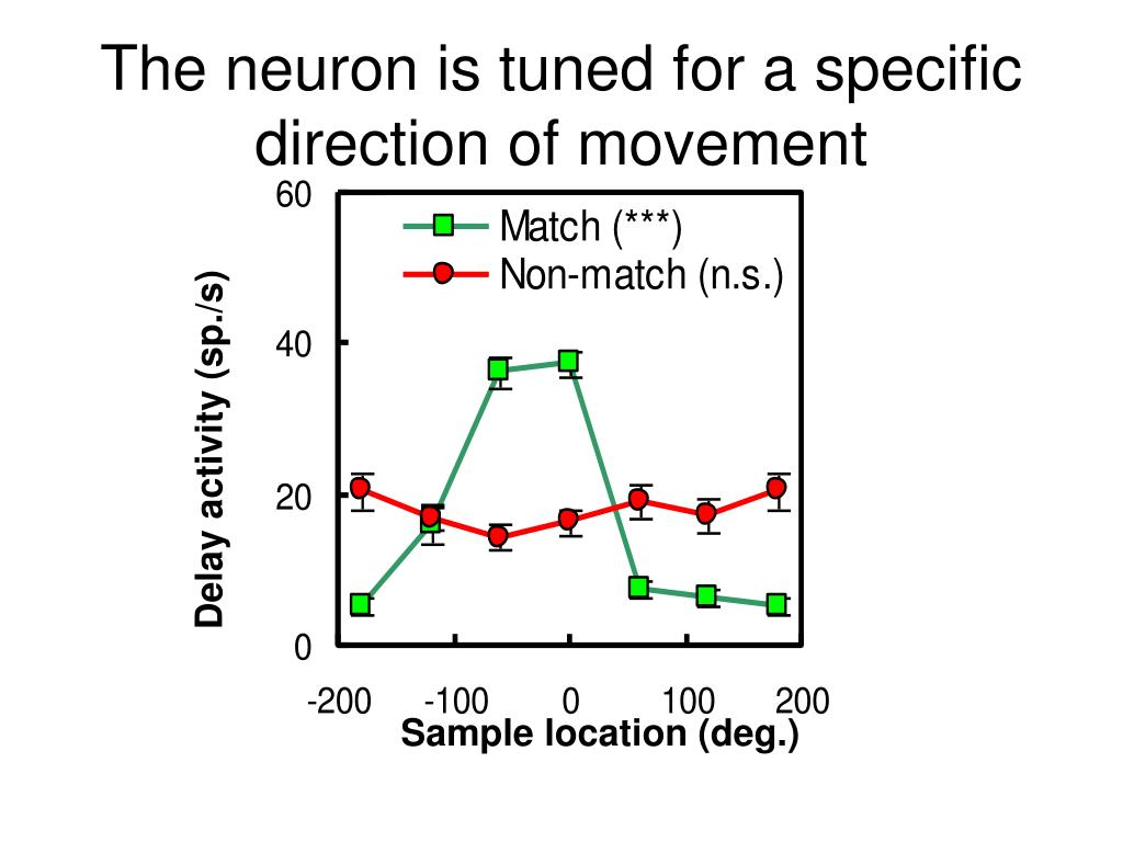 The neuron is tuned for a specific direction of movement