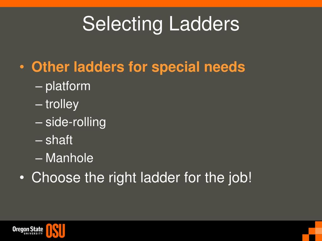 Other ladders for special needs