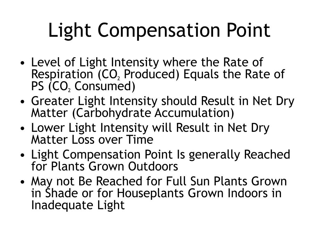 Light Compensation Point
