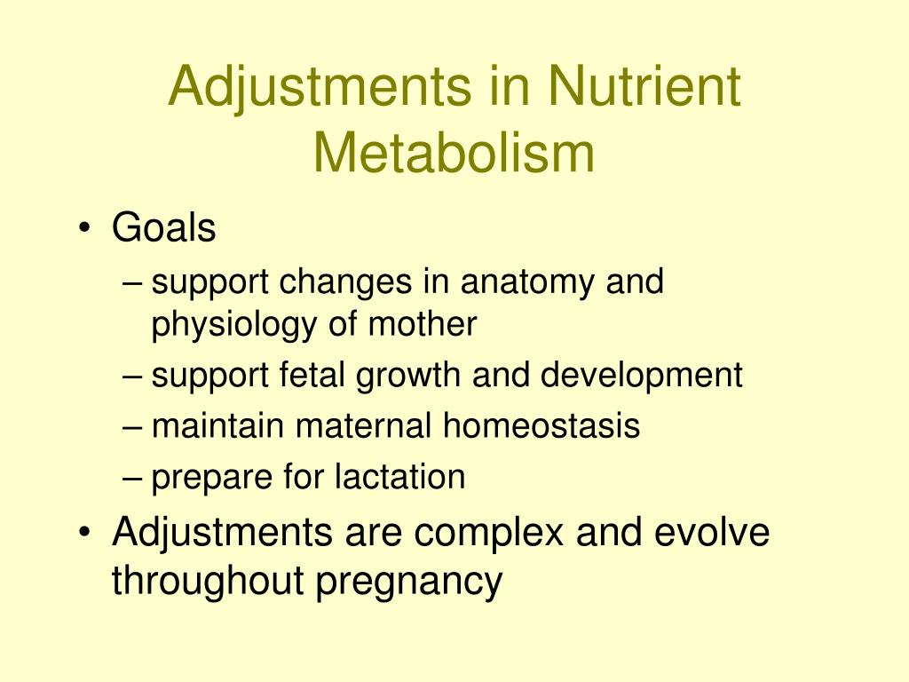 Adjustments in Nutrient Metabolism
