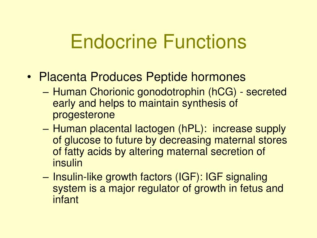 Endocrine Functions