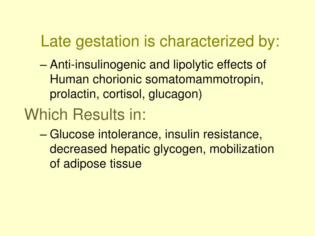 Late gestation is characterized by: