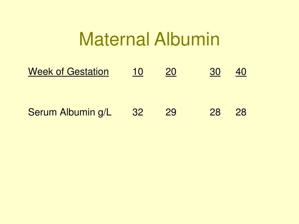 Maternal Albumin