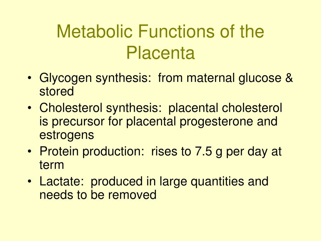 Metabolic Functions of the Placenta