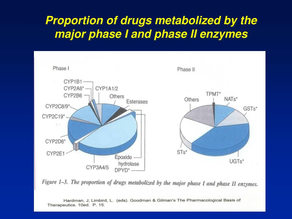 Proportion of drugs metabolized by the major phase I and phase II enzymes