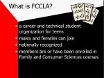 what is fccla3