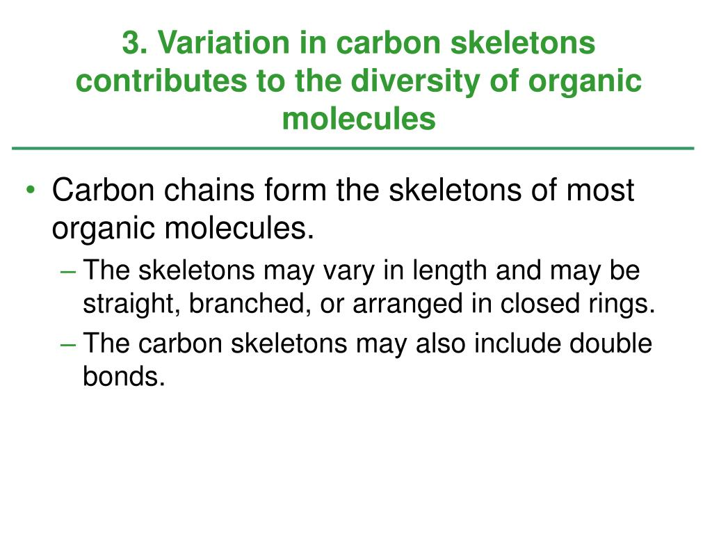3. Variation in carbon skeletons