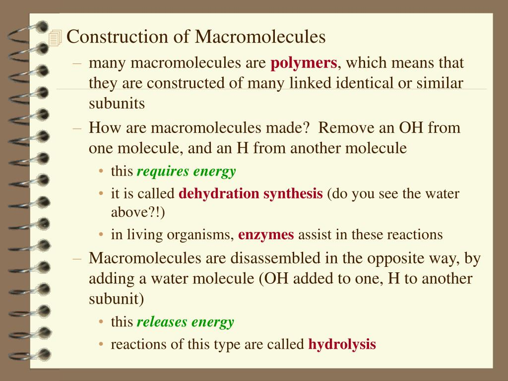 Construction of Macromolecules