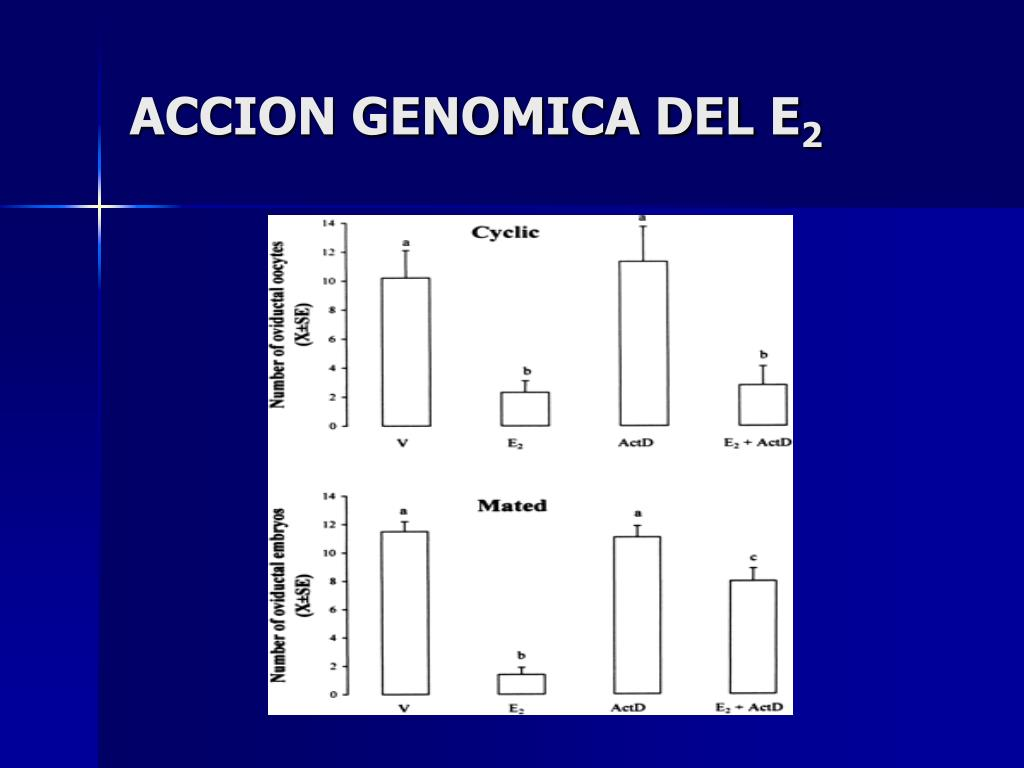 ACCION GENOMICA DEL E