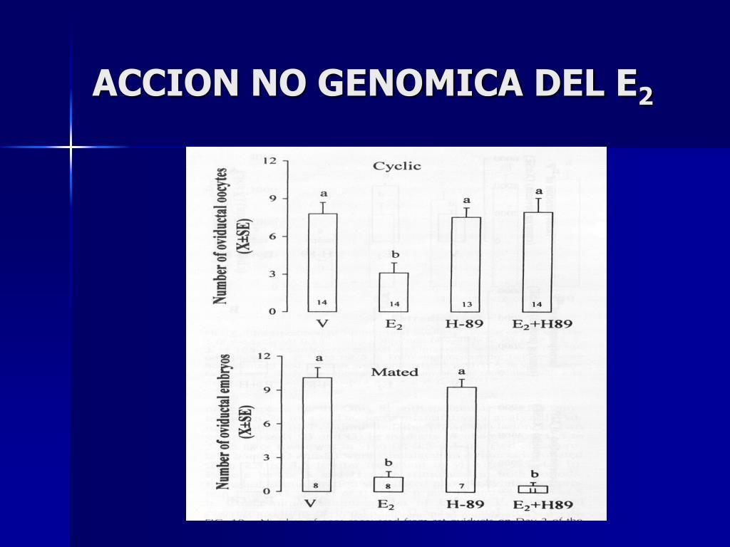 ACCION NO GENOMICA DEL E