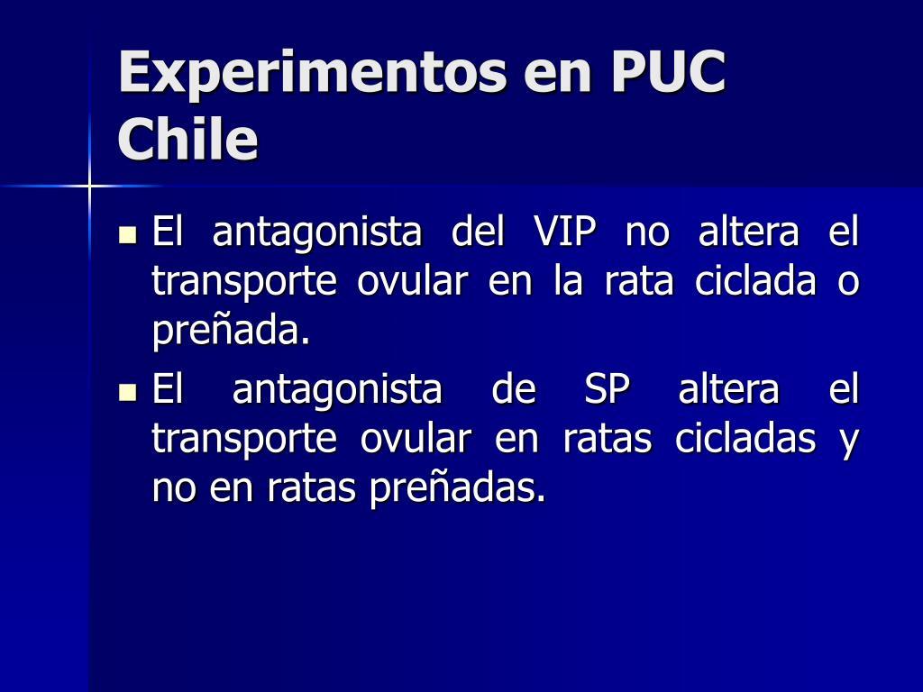 Experimentos en PUC Chile