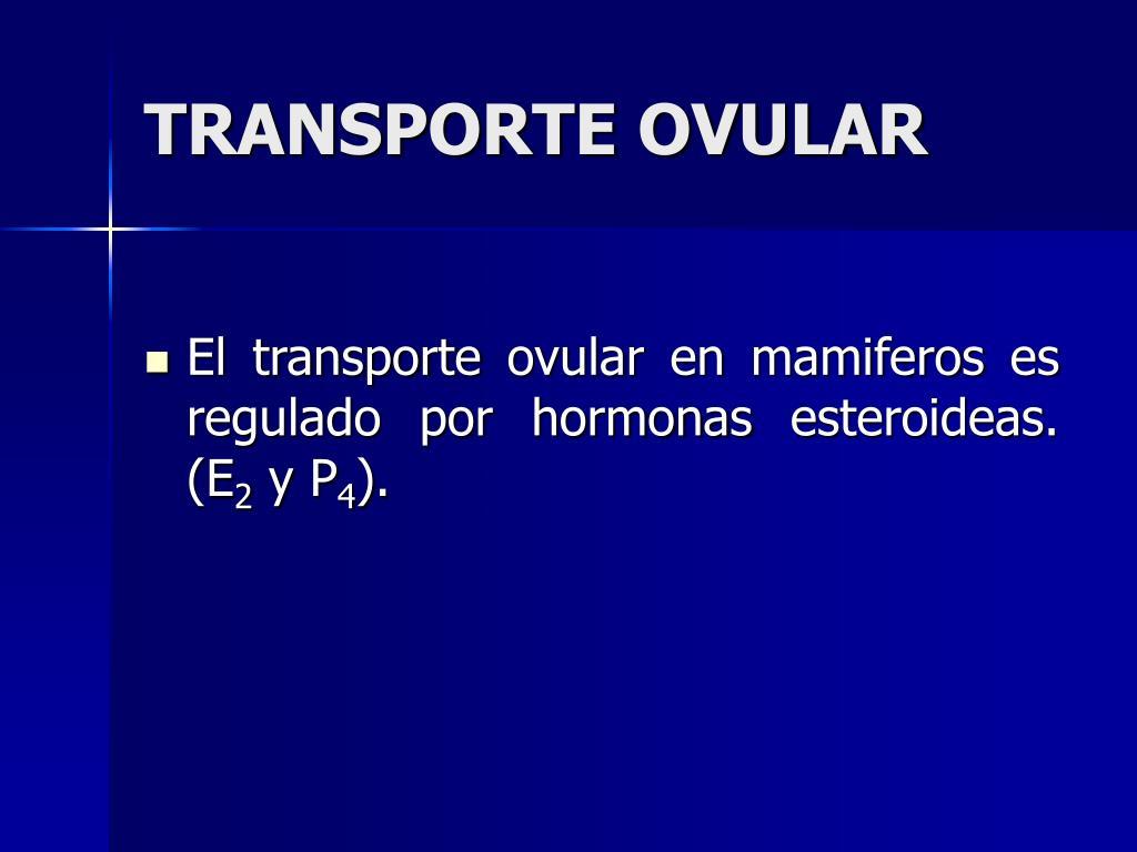 TRANSPORTE OVULAR