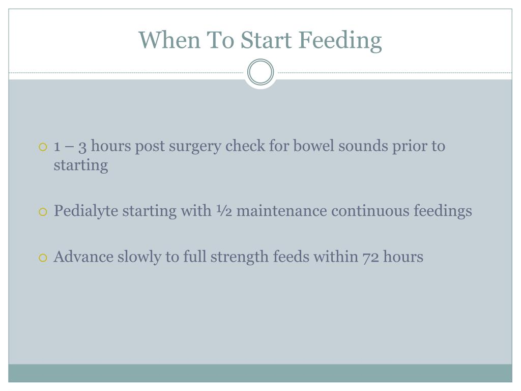 When To Start Feeding