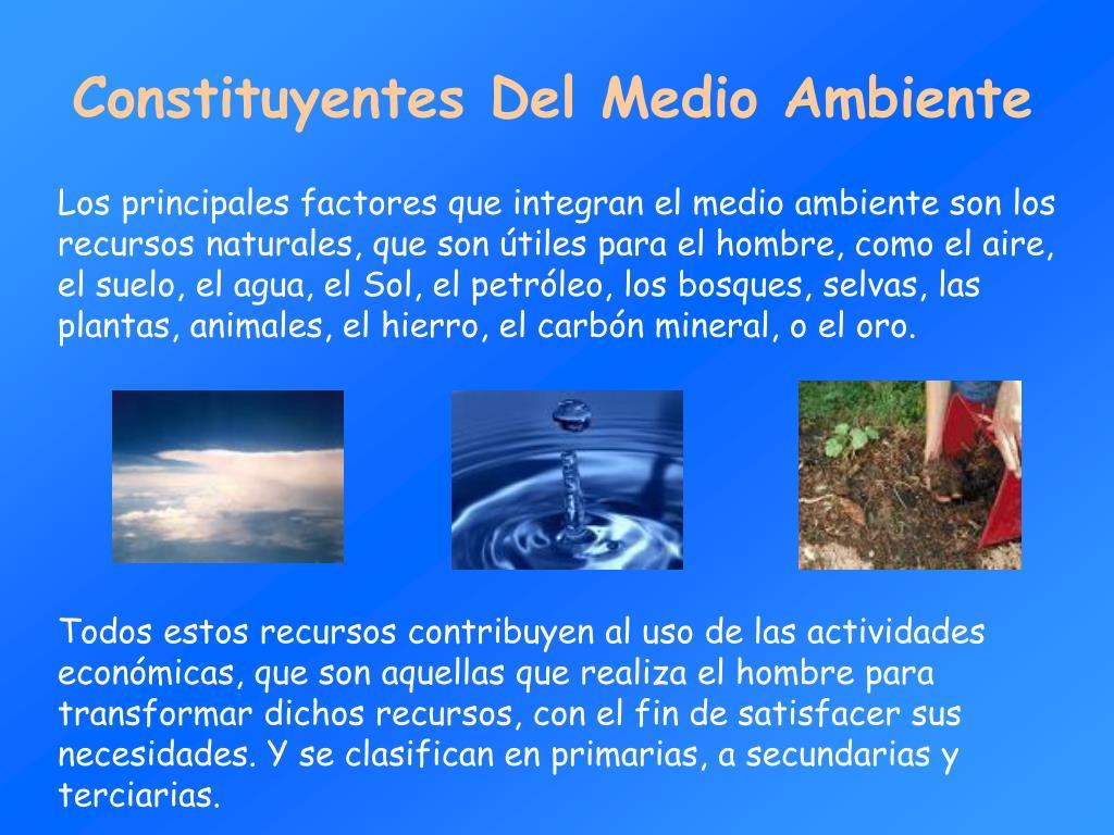 Constituyentes Del Medio Ambiente