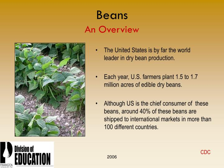 Beans an overview