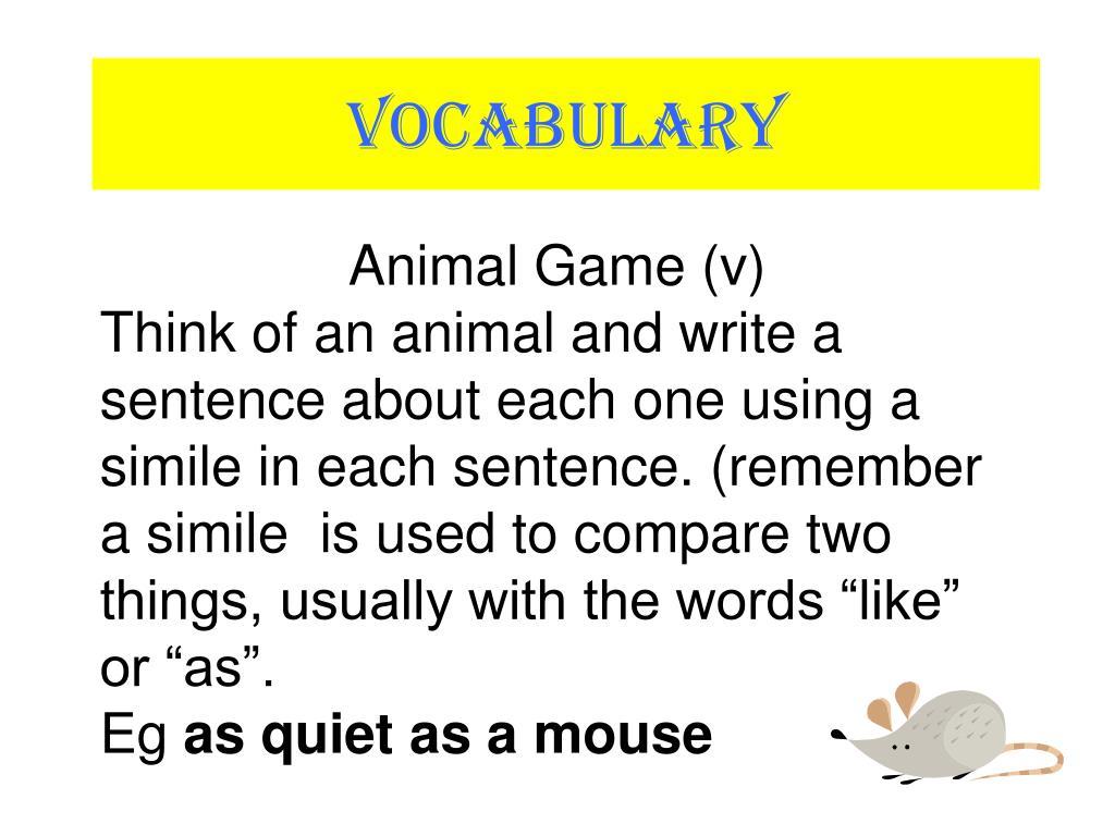 Animal Game (v)