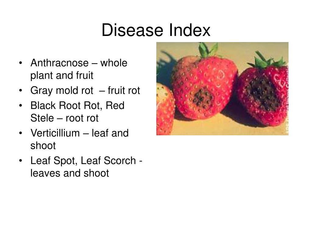Disease Index