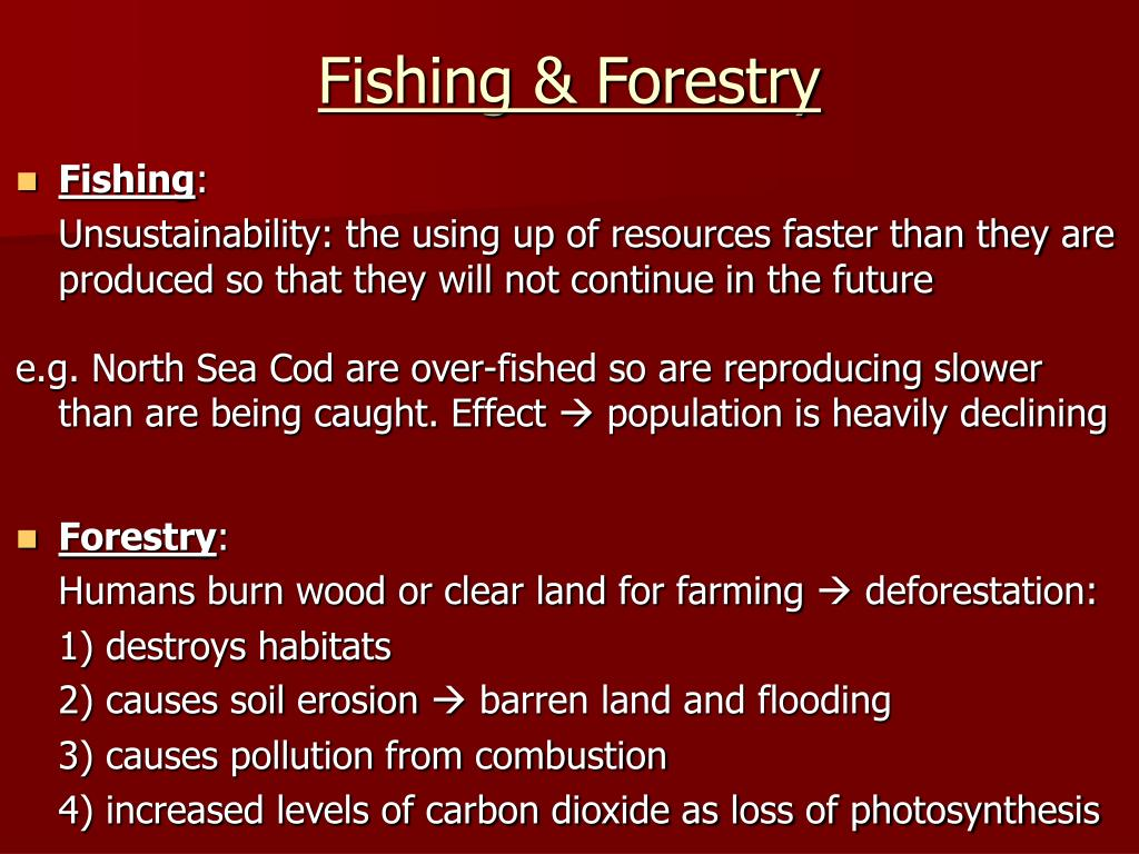 Fishing & Forestry