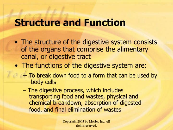 Structure and function l.jpg