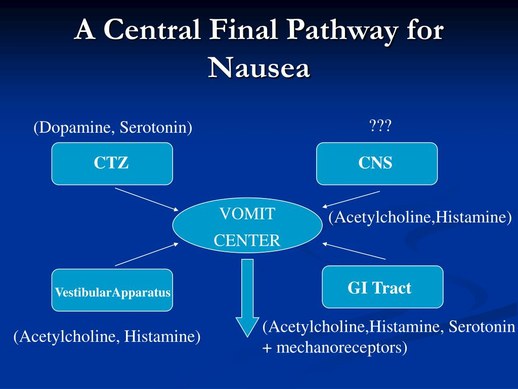 A Central Final Pathway for Nausea