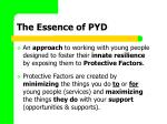 the essence of pyd