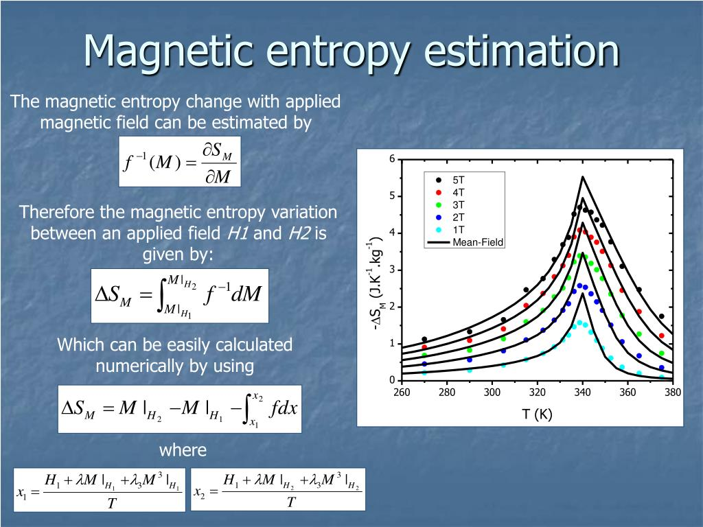 Magnetic entropy estimation